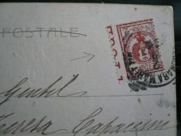 Floreale 2 Cent. Varietà Su Bella Cartolina Di Falconara Marittima - Italië