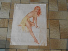 PIN-UP THE VARGA GIRL ESQUIRE 1945 VAROA - Affiches