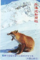 FOX RENARD FUCHS VOS Telecarte (331) - Oerwoud