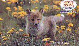 FOX RENARD FUCHS VOS Telecarte (338) - Oerwoud