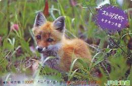 FOX RENARD FUCHS VOS Carte Prepayee (350) - Oerwoud