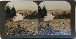 F1 - Photo Stérécospique - A Wing Shot - Quail Hunting In The West - U.S.A. - Un Tir Au Vol - Chasse à La Caille - Anciennes (Av. 1900)