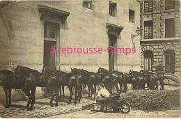 CPA Précurseur-garde Républicaine-cavalerie-bain D´air - Regimente
