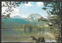 Yugoslavia, UNESCO National Park, Mailed To England - Yugoslavia