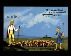 10 - Conquête De La Gaule - Comptage Des Moutons - Romains - Gaulois - Région - France
