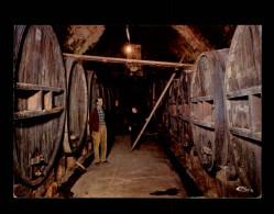 83 - SOLLIES-VILLE - Caves à Vin - Futs - Sollies Pont