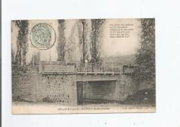 SALVIAC (LOT) LE PONT DE GUILLASSE 1905 - Salviac