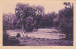 18659 SAINT-CAST. Tennis.  Ed Réservée Bazar Plage - - Tennis