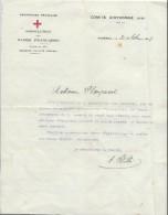 Remise De Diplomes Et Insignes Spéciaux / Association Des Dames Françaises/Mme Flanquart/Oyonnax/1919   DIP206 - Diplômes & Bulletins Scolaires