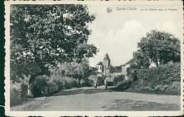 BELGIQUE SAINTE CECILE / Vue Du Chemin Vers La Filature / - België