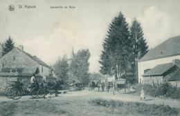 BELGIQUE SAINT HUBERT / Laneuville Au Bois, Vue Intérieure / - Saint-Hubert