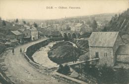 BELGIQUE SALM / Salm-Château, Château, Panorama / - Autres