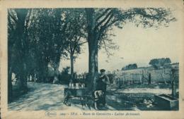 BELGIQUE SPA / Attelage De Chien, Route De Géronstère, Laitier Ardennais / - Spa