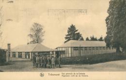 BELGIQUE TRIBOMONT / Vue Générale De La Colonie / - Belgique