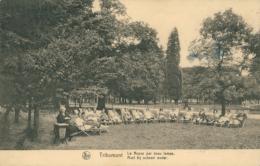 BELGIQUE TRIBOMONT / Le Repos Par Beau Temps / - Belgique