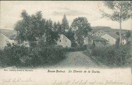 BELGIQUE TROIS PONTS / Basse-Bodeux, Le Chemin De La Coulée / - Trois-Ponts