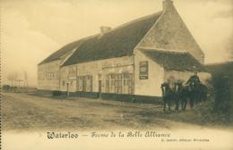 BELGIQUE WATERLOO / Ferme De La Belle Alliance / - Waterloo