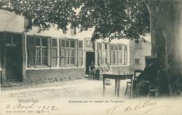 BELGIQUE WESTERLOO / Estaminet Sur Le Chemin De Tongerloo / - Westerlo