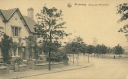 BELGIQUE WINTERSLAG / Avenue Des Marronniers / - Belgique