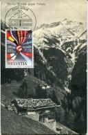 7079 Switzerland,  Maximum 1992  Berge, Schutzt Die Alpen  Card Vintage - Cartoline Maximum