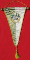 FOOTBALL / SOCCER / FUTBOL / CALCIO - ERDI VSE, Hungary, Vintage Pennant, Wimpel - Habillement, Souvenirs & Autres
