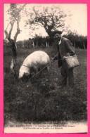 Cochon - Ain Périgord - La Récolte De La Truffe - Le Départ - Paysan Et Cochon - Lo Récolto De Lo Truffio - LOUIS GARDE - Cerdos