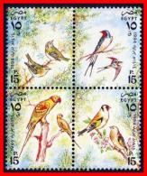 EGYPT 1994 BIRDS SC#1551 MNH PARROTS (E15) - Collections, Lots & Series