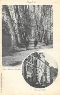 Luxeuil (Haute-Saône) - Multivues: Nouveau Casino, Parc, Allée Des Platanes - Carte Précurseur Non Circulée - Luxeuil Les Bains