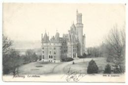 Belgique - Antoing - Le Chateau - Antoing