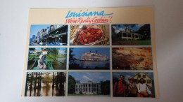 USA Louisiana . We're Rally Cookin'. Creole Aand Cajun Cookink. Alligators, Accordéon, ... - Etats-Unis
