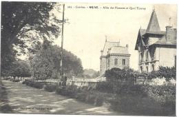 19 CORREZE - BRIVE Allée Des Platanes Et Quai Tourny - Brive La Gaillarde