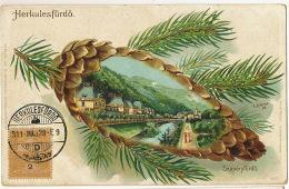 Herculesfurdo Szaparyfurdo Litho Krizsany  Stamped But Not Postally Used Signed E. Schlemo 1899 - Hongarije