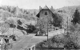 CPSM - BADONVILLERS (54) - Aspect De La Maison De Repos ,les Merises, Et Des Abords En 1954 - Autres Communes
