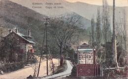 RUSSIA : GEORGIA - CAUCASE : GAGRY / GAGRA : EN HIVER / IN WINTER - YEAR ~ 1910 - RARE !!! (u-082) - Géorgie