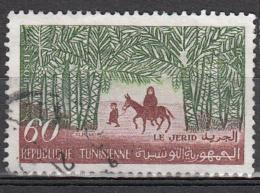 Tunesie 1959 Mi Nr 535 Djerid, Animal  Ezel, Donkey - Tunesië (1956-...)