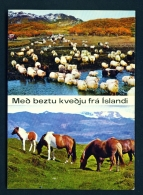 ICELAND  -  Thjorsardalur  Dual View  Unused Postcard - Iceland