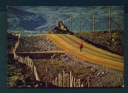 ICELAND  -  Myvatn  Unused Postcard - Iceland