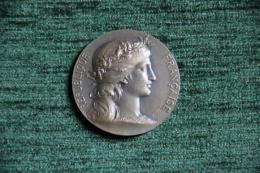 Médaille De La Société Canine - PARIS 1931 - 2ème Prix D'élevage National, Grav&eacut - Professionnels / De Société