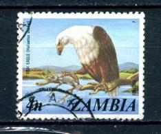 - ZAMBIA --  Uccello : AQUILA PESCATRICE - Bird - Usato- Used. - Zambia (1965-...)