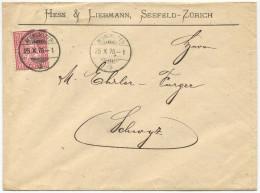 1297 - NEUMÜNSTER 25 X 78 Auf Firmenumschlag Nach Schwyz Mit Sitzender Helvetia - Entiers Postaux