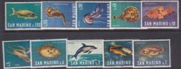 San Marino 1966 Fish Mint Never Hinged - Neufs