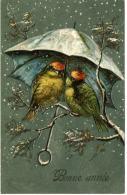 CP Gaufrée  - Bonne Année -  Couple D'oiseaux S'abritant De La Neige - Nouvel An