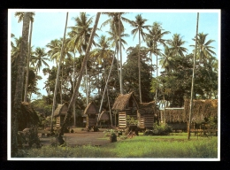 Yam Houses, Trobriand Island Village, Milne Bay Province PNG 1048 / Postcard Not Circulated - Océanie