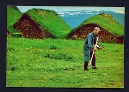 ICELAND  -  Glaumbaer  Old Turf Farm  Unused Postcard - Iceland