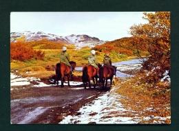 ICELAND  -  Thjorsardalur  Autumn  Unused Postcard - Iceland
