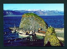 ICELAND  -  Arnarstapi  Unused Postcard - Iceland