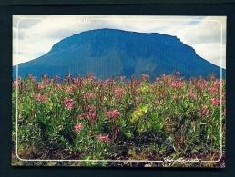 ICELAND  -  Mount Heroubreio  Unused Postcard - Iceland
