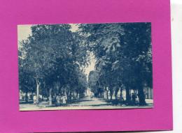 GUADELOUPE /  BASSE TERRE     1920  LE COURS NOVILOS     CIRC NON  EDIT - Basse Terre