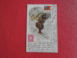 Norge Norway Norwege Laponie Fantasie Serie La Poste 1901 - Fantaisies