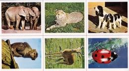 4 PLANCHES DE 6 IMAGES CARTONNÉES 6,7X8,2cm LES ANIMAUX DU MONDE COULEUR EDITIONS LES PLAISIRS ET LES JEUX VERS 1980/90 - Livres, BD, Revues